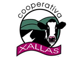 Logo-Xallas